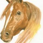 Brown Jorse