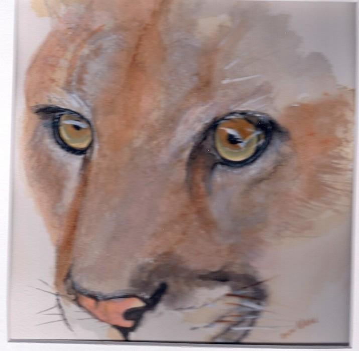 Mountain Lion Two